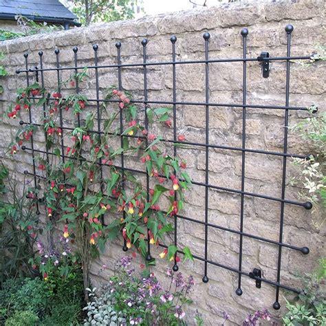 metal garden wall trellis metal garden trellis harrod horticultural