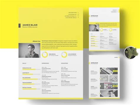 find perfect indesign resume template showcase
