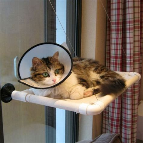 window mounted cat bed beds easy fixing window mounted cat bed fast install nest