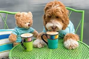 Reagan sits down to a tea party with one of his toys wearing identical