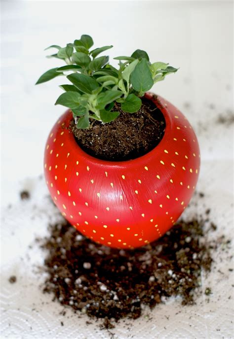 diy painted strawberry herb planter  charming project