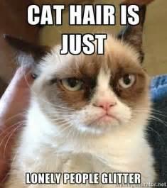 Grumpy Cat Wedding Meme - 27 grumpy cat funny memes quotes reviews