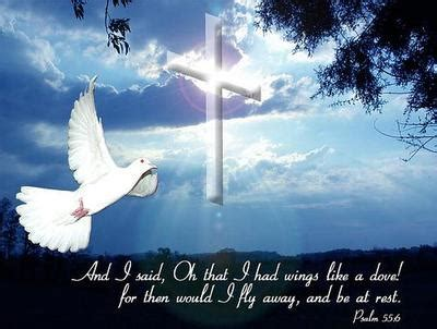 flying with one wing god s grace in our times of adversity books psalm 55 6 religious myniceprofile