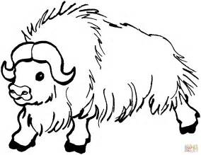 Yak Coloring Page Free Printable Coloring Pages