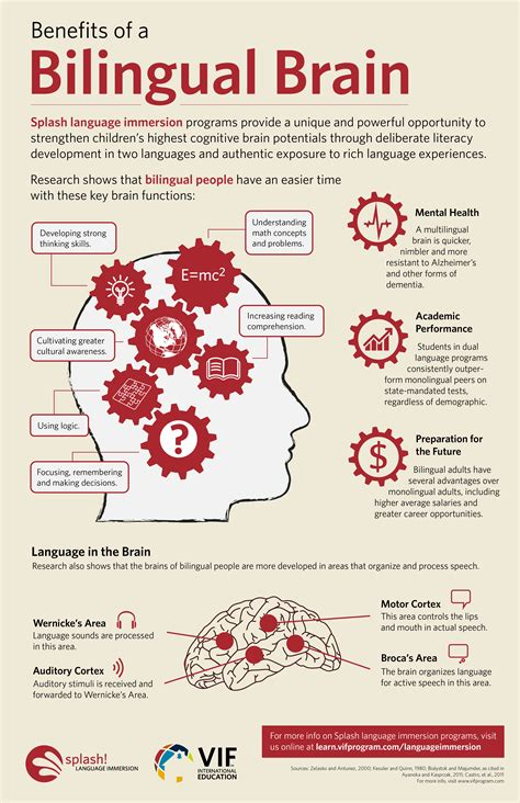 benefits of a benefits of a bilingual brain infographic e learning infographics