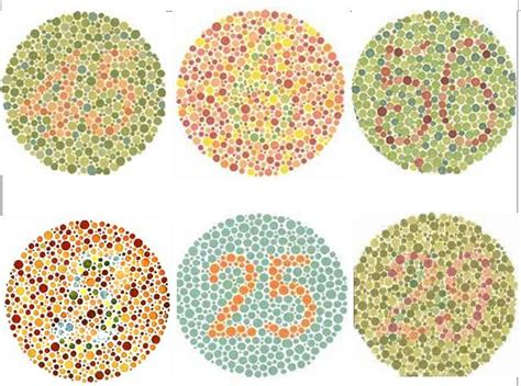 Alat Tes Mata tes buta warna