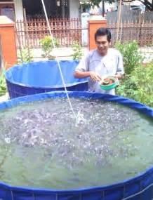 Jual Kolam Terpal Siap Pakai Bandung kolam terpal lele jual kolam terpal lele siap pakai
