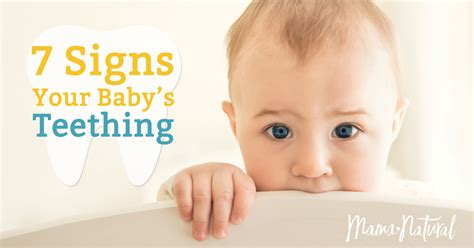 7 Signs That Your Child Is Developing An Disorder by Teething Symptoms 7 Signs Your Baby Is Teething