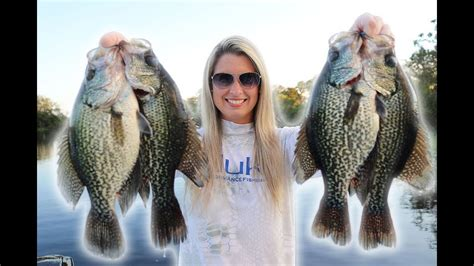 fishing  crappie   minnows youtube