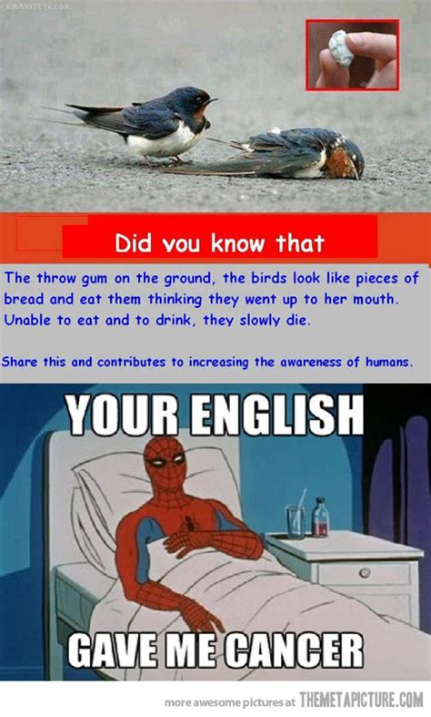 Spiderman Cancer Meme - that english the meta picture