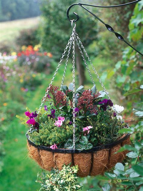hanging planter basket plant a winter hanging basket hgtv