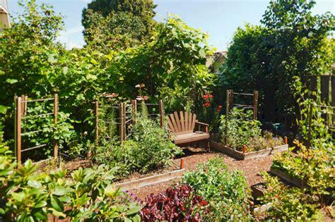 backyard vegetable garden idea 24 spaces