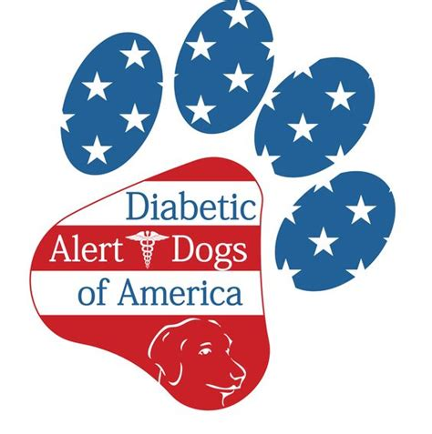 diabetes service diabetic alert dogs of america high quality diabetic service dogs for children