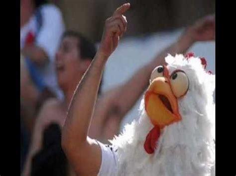 imagenes de gallinas llorando la 12 lloran gallinas boca imagenes letra youtube