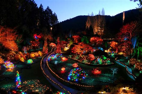 butchart gardens holiday lights how to have the best white christmas in canada