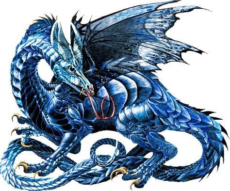 drachen le dragons images blue hd wallpaper and background