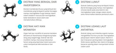 Obat Herbal Untuk Mengembalikan Stamina Tubuh hp 081381995454 obat pembesar tercepat aman tanpa