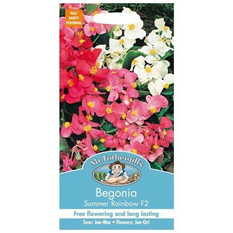 Jual Bibit Bunga Begonia jual benih begonia summer rainbow f2 2000 biji mr fothergills bibit