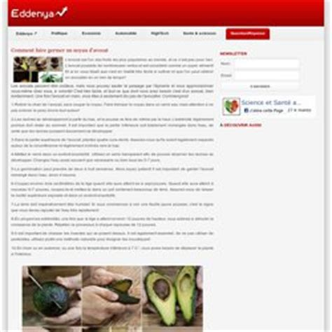 Comment Faire Germer Un Noyau D Avocat by Agriculture Mode De Vie Alternatif Pearltrees