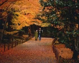 november tokyo best things to do in tokyo november 2017 tokyo top guide