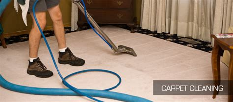 carpet cleaning microbe free solutions applying green