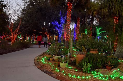 hundreds of thousands of lights on display at florida