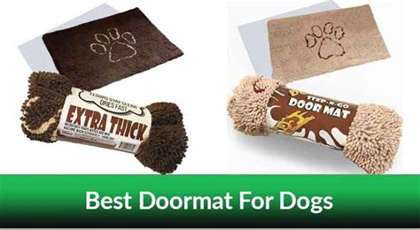 Best Doormat For Dogs by Best Doormat For Dogs 2019 Top Selling Models Reviewed