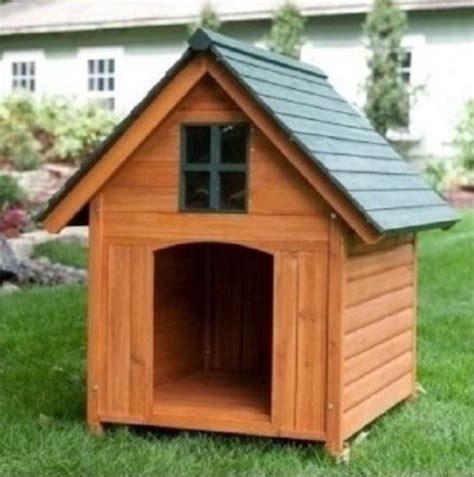 xl dog house 1000 ideas about extra large dog kennel on pinterest dog house plans dog kennels