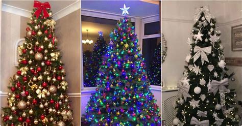 readers favourite 18 christmas trees in newcastle and the