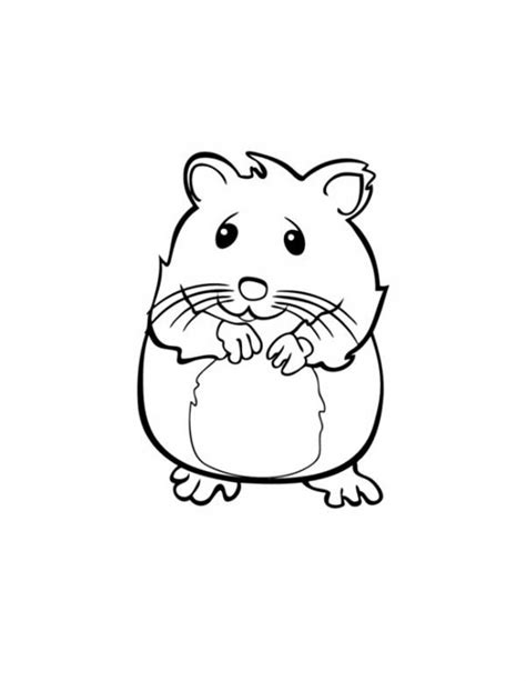 cute hamster coloring pages kids coloring