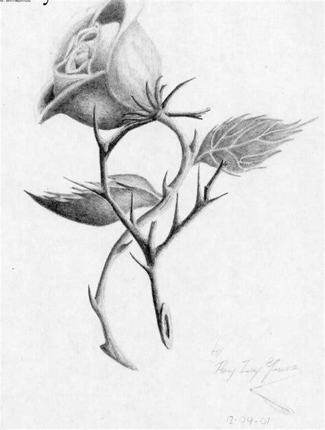 sket tattoo mawar drawings of roses with thorns pictures to pin on pinterest