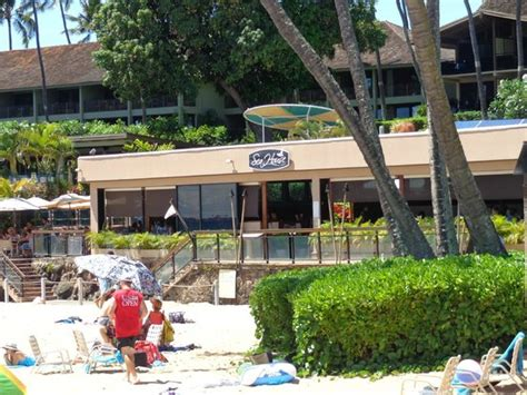 sea house maui view from our table picture of sea house restaurant lahaina tripadvisor