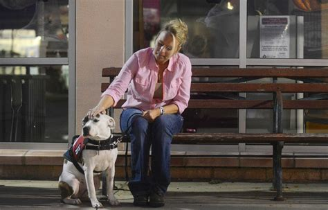 ptsd and service dogs a guide for sufferers dogs in service for ptsd sufferers san antonio express news