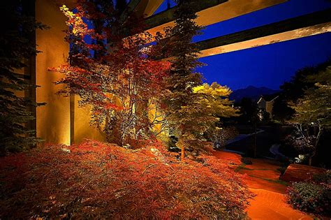 outdoor lighting for trees low voltage landscape lighting trees clarkus tree up inspiration