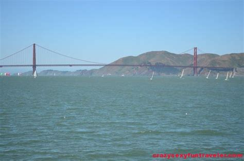 san francisco bay area boat tours boat rides in san francisco