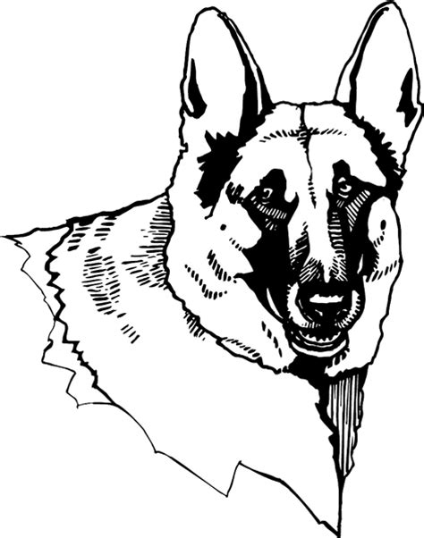 coloring pages of german shepherd free lps dachshund dogs coloring pages