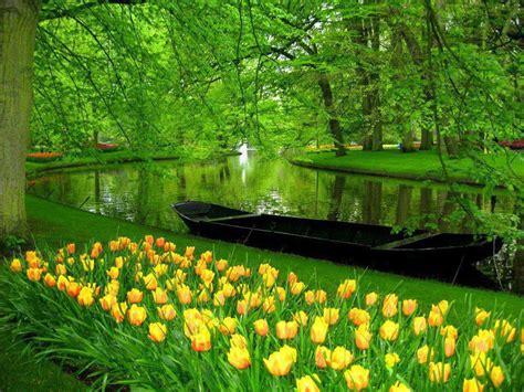 Streetics Blog Keukenhof Lisse Netherlands Netherland Flower Garden