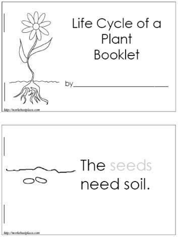 biography lesson plans for kindergarten spring plants kindergarten lesson plans and kindergarten