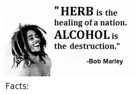 bob marley facts biography 25 best memes about bob marley weed and funny bob