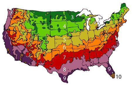 us garden zones design ideas pictures of landscaping 08080 zip code