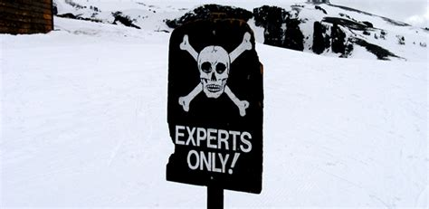 using experts inexpertly leads to policy failure warn