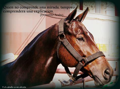 imagenes de vaqueras y caballos y el caballo es mi afici 243 n frases