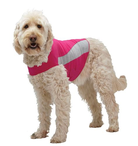 thundershirt for dogs thundershirt anxiety treatment jacket