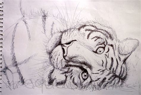 dibujos realistas boli bic dibujos realistas boli bic el rinc 243 n de pequecol
