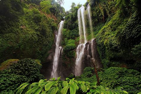 sekumpul waterfall waterfall  bali thousand wonders