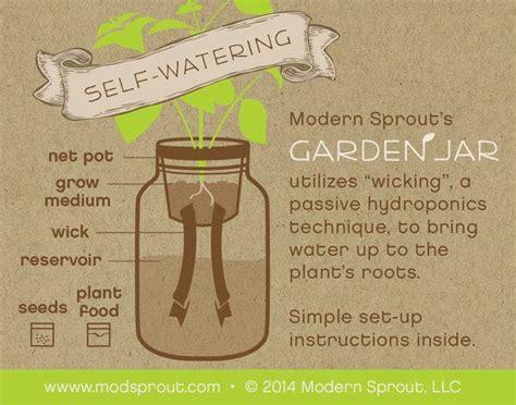 mason jar herb kit  watering planter  growing