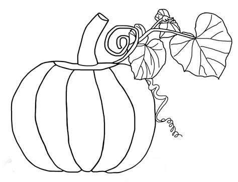coloring page pumpkin free printable pumpkin coloring pages for kids