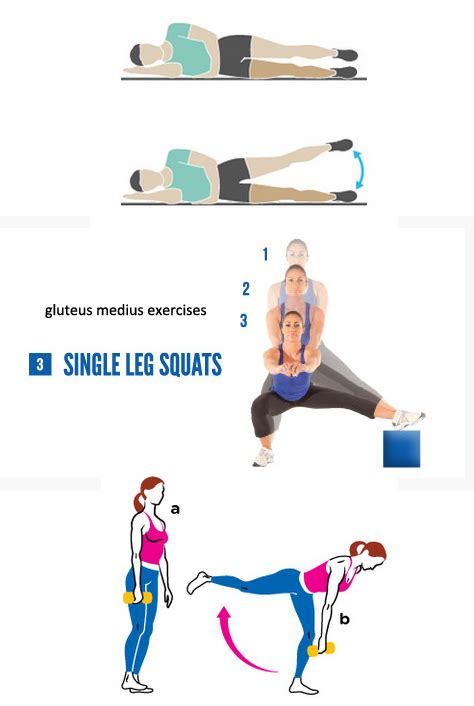 gluteus medius exercise health fitness