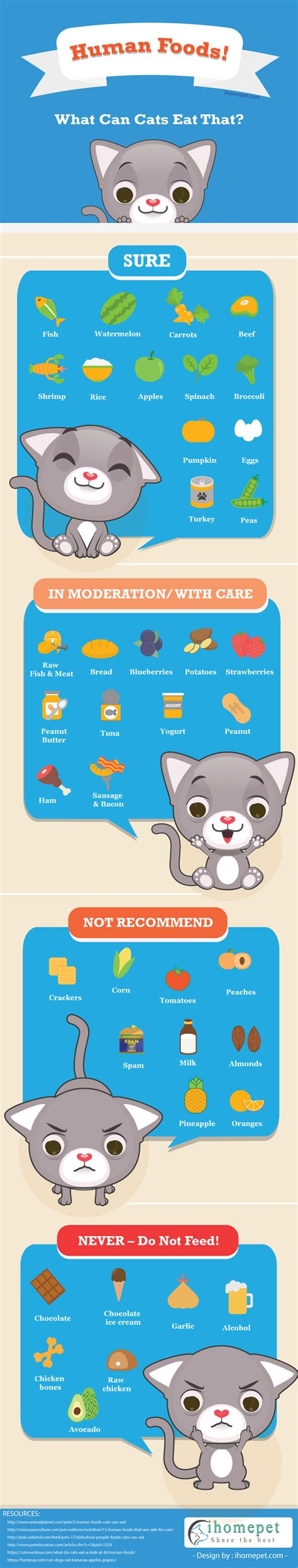 wont eat food but will eat human food foods cats can eat