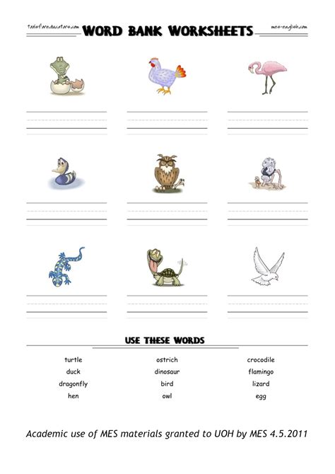 Adaptation Worksheet by Animal Adaptation Worksheet Worksheets For School Getadating